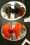 "Black Vagina & Red Vagina, by Paedra Bramhall, 2004, blown art glass & mirror, 30"" x 18"" x 10""  each"